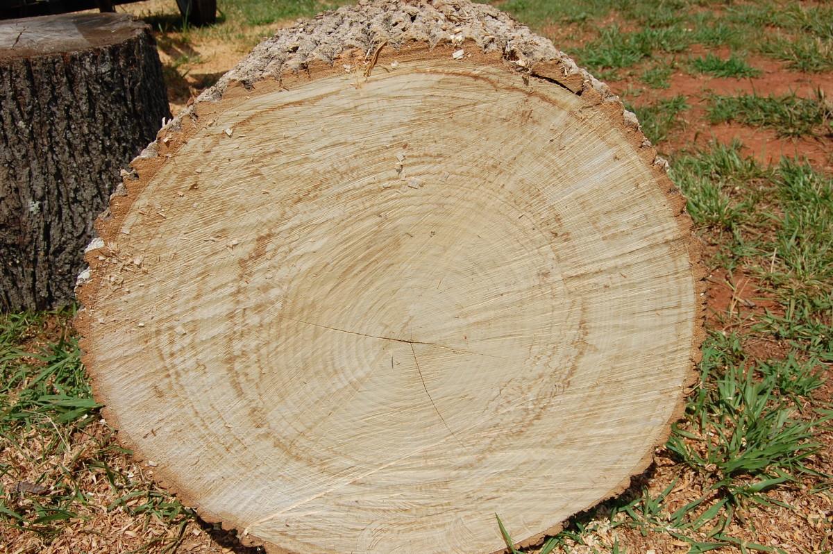 Blog Mark S Firewoodmark S Firewood Providing Seasoned